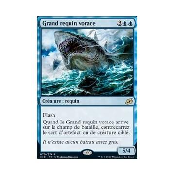 Grand requin vorace
