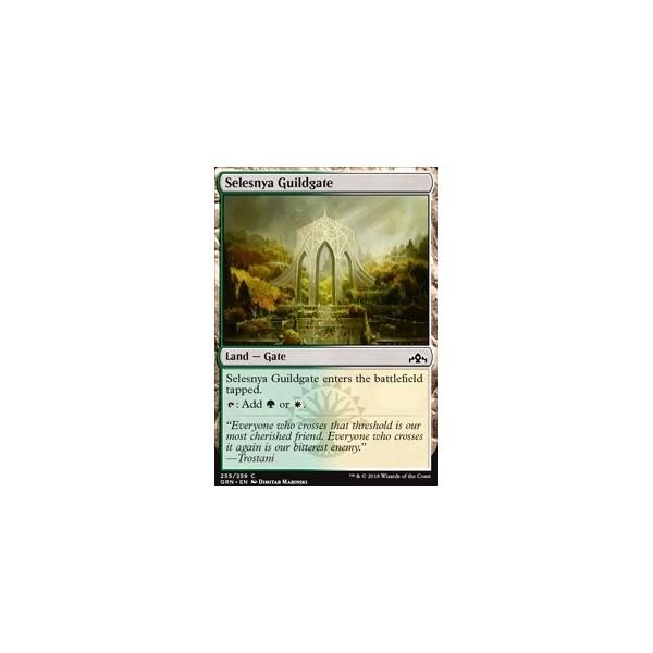 Catan : 5/6 joueurs  (Extension)